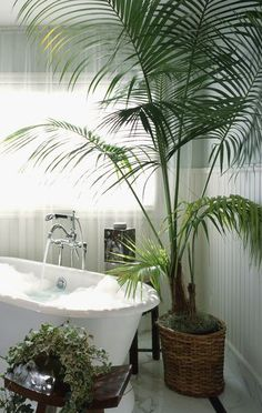 Tips For a Toasty Warm Bathroom from Home Experts Large Fake Plants, Fake Plants Decor, House Plants Decor, Faux Plants, Cool Plants, Decorating With Fake Plants, Shade Plants, Warm Bathroom, Bathroom Colors