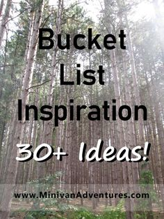 What would you put on your bucket list? Learn a new skill, travel to an exciting destination, do something that scares you? Let my bucket list inspire you to create one of your own. Traveling With Baby, Travel With Kids, Family Travel, Bucket List Family, Summer Bucket Lists, Learn A New Skill, Minivan, Happy Mom, Family Outing