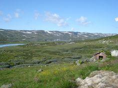 Hardangervidda Norway, Mountains, Nature, Travel, Naturaleza, Viajes, Destinations, Traveling, Trips