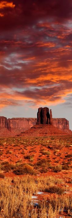 25 Unbelievable Places You Won't Believe Actually Exist Monument Valley, Arizona All Nature, Amazing Nature, Places To Travel, Places To See, Monument Valley, Beautiful World, Beautiful Places, Landscape Photography, Nature Photography
