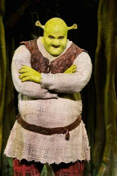 Shrek! Saw Shrek the Musical on Broadway and at Proctor's.  I loved it both times!