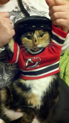 NJ Devils fan - OMG I need this for my Garfie!