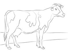 Click To See Printable Version Of Holstein Cow Coloring Page