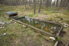 How to Build a Bird Reflection Pool | Nature TTL