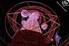 Christmas lights at Madeira Island!
