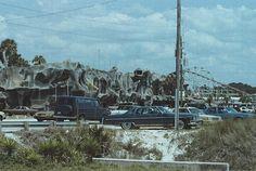alivns 1983