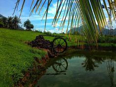 Memórias. 🎞 #vsco | antoniacanavitsas | VSCO Vsco Feed, Fair Grounds, Community, Travel, Image, Viajes, Destinations, Traveling, Trips
