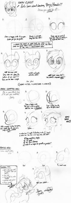 Pony+Drawing+Guide:+Heads+by+TwilightFlopple.deviantart.com+on+@deviantART