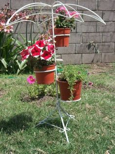 Cactus, Planter Pots, Image, Home Decor, Metal Crafts, Welding Projects, Container Gardening, Umbrellas, Planters