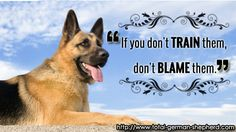 GSD- Right !!