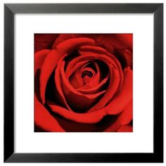 Art.Com Red Romantic Blooming Red Rose Framed Art (760 MAD) ❤ liked on Polyvore featuring home, home decor, wall art, red, blossom wall art, red home accessories, red home decor, wood wall art and flower stem