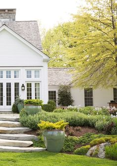 Classic white clapboard home exterior with natural stone slab stairs and urns filled with succulents.