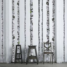 Fabulous wallpaper that looks like birch trees