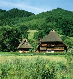 The Schwartzwald (Black Forest), Germany. Cuckoo clock country.