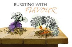 The planting harvesting and flowering times for some popular vegetables and flowers. Grow Your Own, Planting, Place Cards, Seeds, Calendar, Place Card Holders, Vegetables, Garden, Flowers