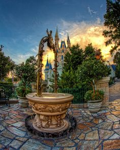 "Cinderella's Wishing Well, Magic Kingdom, Disney World ~ ""I have to find this! I didn't even know that they had one!"""