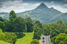 Mullumbimby, just drive from Byron Bay is in the middle of the Rainbow Region, surrounded by rolling hills, volcanic cliffs and breathtaking valleys. Places To Travel, Places To Visit, Rainforest Plants, Adventure Tours, Byron Bay, Australia Travel, Vacation Spots, The Good Place, Beautiful Places