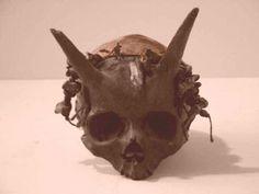 demon human hybrid skull