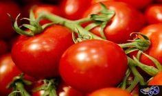 من فوائد الطماطم الوقاية من مرض سرطان…: فوائد الطماطم كثيرة ومتعددة فبالاضافة الى فوائد الطماطم للبشرة وفوائد الطماطم للرجيم فقد اكتشف…