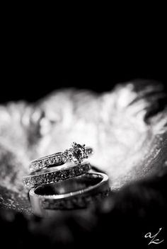 i love the rings Wedding Ring Pics, Wedding Pins, Wedding Pictures, Wedding Engagement, Dream Wedding, Wedding Stuff, Wedding Ideas, Sister Wedding Quotes, Wedding Photography Poses
