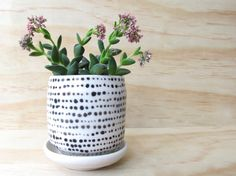 Small Planter With Dots. Black and white. Tiny planter. Modern. Polka dots. Wedding gift. Houseplants. Dish and drainage hole. MADE TO ORDER