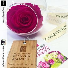 Repost from @stylemagazines using @RepostRegramApp - This flower stays fresh for up to 18 months. We know. Magic right? For all the details click link in our bio! #roses #rose #enchantedrose #flowersofinstagram #flowers #pink #northsideflowermarket @northsideflowermarket #shutupandtakemymoney #lovestyle by northsideflowermarket