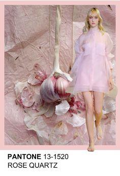 Rose Quartz 13-1520 Pantone spring summer 2016 www.lortodimichelle.it