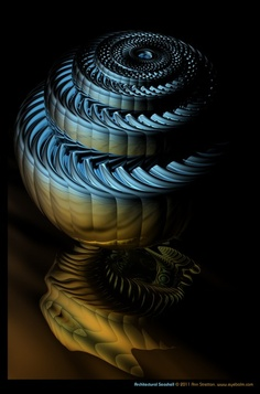 Architectural Seashell