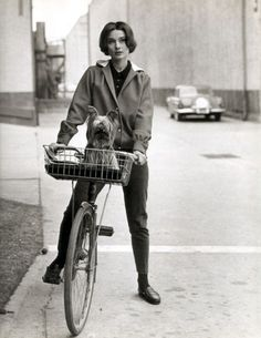 Audrey Hepburn by Sid Avery, On her Bike with Her Famous Dog at Paramount Studios, 1957