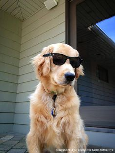 Who else is just chillin enjoyin this bootiful day wike mysewf!? (Facebook via Ray Charles)