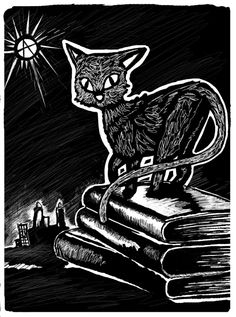 Books, Cats and Anarchy! Who could complain? Anarcho Communism, Arte Punk, Anarcho Punk, Lowbrow Art, Graphic Design Inspiration, Cat Art, Catwoman, Cat Lovers, Drawings