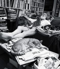 Edward Gorey: at home, with cats.