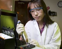 Crystal Jaing, Group Leader of Bio's Applied Genomics Group, prepares a Microbial Detection Array slide, the primary detection technology used in an international study of bladder cancer samples.