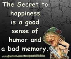 The secret to happiness (9 pieces)