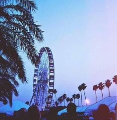 coachella, summer, and palm trees resmi