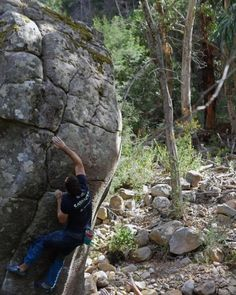 www.boulderingonline.pl Rock climbing and bouldering pictures and news tri-climbing: An ima