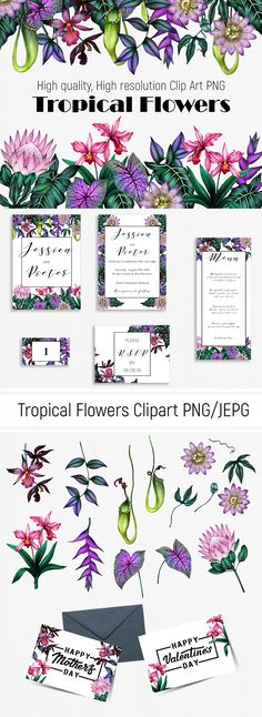 "Podívejte se na můj projekt @Behance:  ""Tropical Flowers Clip Art"" https://www.behance.net/gallery/62225567/Tropical-Flowers-Clip-Art"