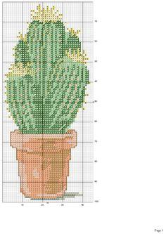 Gallery.ru / Фото #7 - cactus - patrizia61