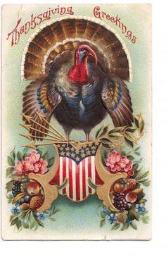 Early Patriotic Turkey Thanksgiving Postcard