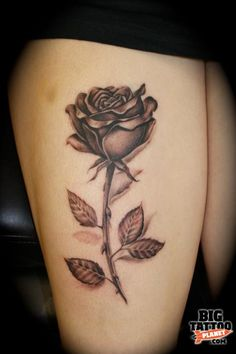Pictures Of Realistic Rose With Stem Tattoos Rock Cafe