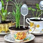 herbs, planted, potted, tea, cups, cup, spoon, garden, markers, etched, plant, plants, wedding, party, favor, favors