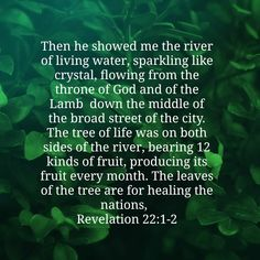 Rivers Of Living Water, Healing Verses, Kinds Of Fruits, Change Your Mind, You Changed, Herbs, Life, Herb