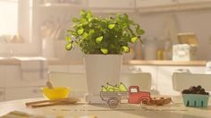"""When Story Worldwide approached us with the task of showcasing how Beech Nut's """"Real Food For Babies"""" is made, we developed a unique concept combining sunny live-action with whimsical 2d animation, eventually crafting an entire, illustrated, animation-driven Beech Nut factory set on the wooden table of a cozy, real-world kitchen.  Credits  Project: Beech Nut """"Just Gentle Cooking"""" Client: Beech Nut Agency: Story Worldwide Production Co / VFX: Aggressive Executive Producer: Dan Shapiro…"""