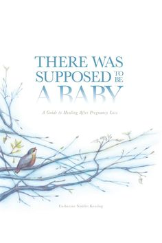 There Was Supposed to be a Baby: A Guide to Healing After Pregnancy Loss:Amazon:Kindle Store