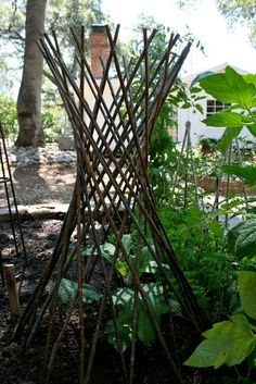 Vine support - the Polished Pebble: Vegetable Garden Ideas