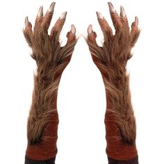 Werewolf Glove Hands - TA343 - Fingers, Hands, Feet & Legs found on Polyvore