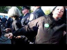 Election présidentielle américaine : la candidate écologiste... jetée en prison