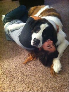 This is why having a big dog is awesome! Can't wait to bring home my big baby... someday