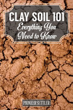 How to Amend Clay Soil - The Homesteader's Guide | Gardening Ideas and Tips by Pioneer Settler at http://pioneersettler.com/how-to-amend-clay-soil/