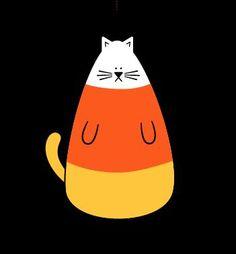 Halloween Kitteh!  Candy Corn Kitty!